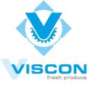 Viscon Group werkt samen met 1ngenieur